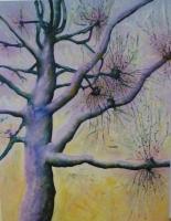 10_john-islip-street-tree_v2.jpg