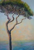 10_tuscany-tree.jpg